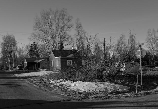 Fairbanks Morning Walk 04232017-4