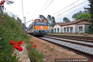 Primavera a Torrebonica
