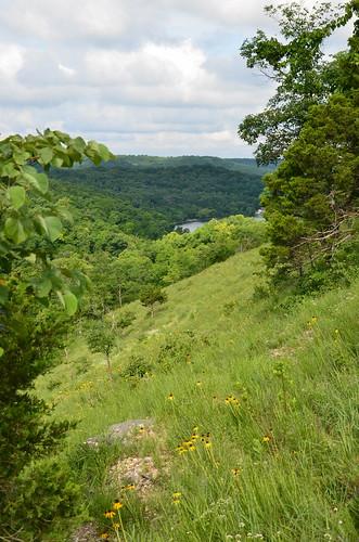 statepark landscape scenic missouri wildflowers ozarks stateparks hahatonka