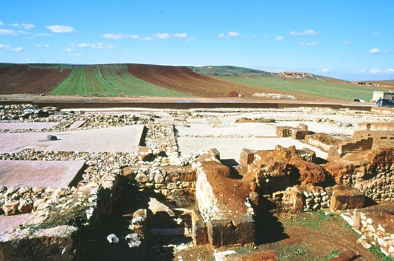 Ebla 2002-0009
