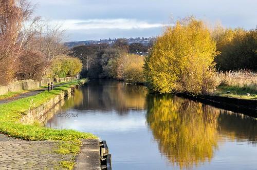 uk autumn england home reflections canal still nikon calm lancashire autumncolours autumnal 80200 burnley leedsliverpoolcanal d90 2013 nikond90 swjuk nov2013