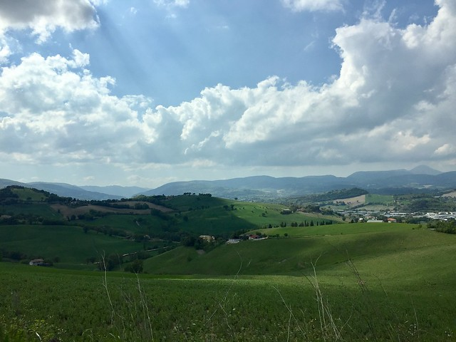 Colline verdi - Green hills