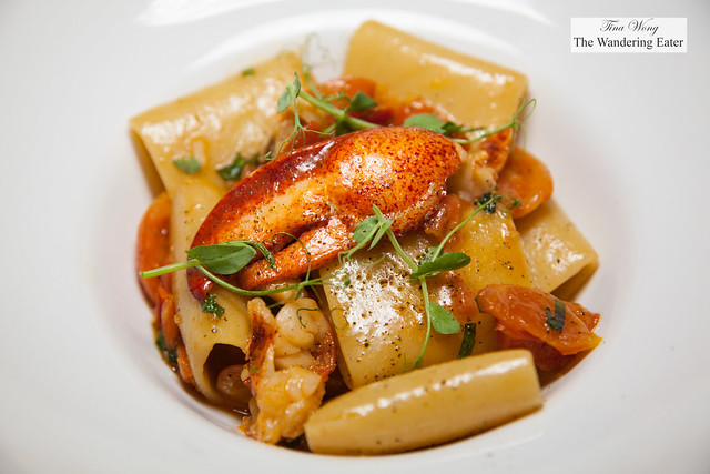 """""""Cavalier Cocco"""" paccheri pasta with Maine lobster, cherry tomatoes, basil"""