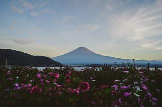 Monte Fuji | by jose.jhg