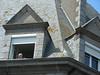 St. Malo – soužití lidí a racků, foto: Petr Nejedlý