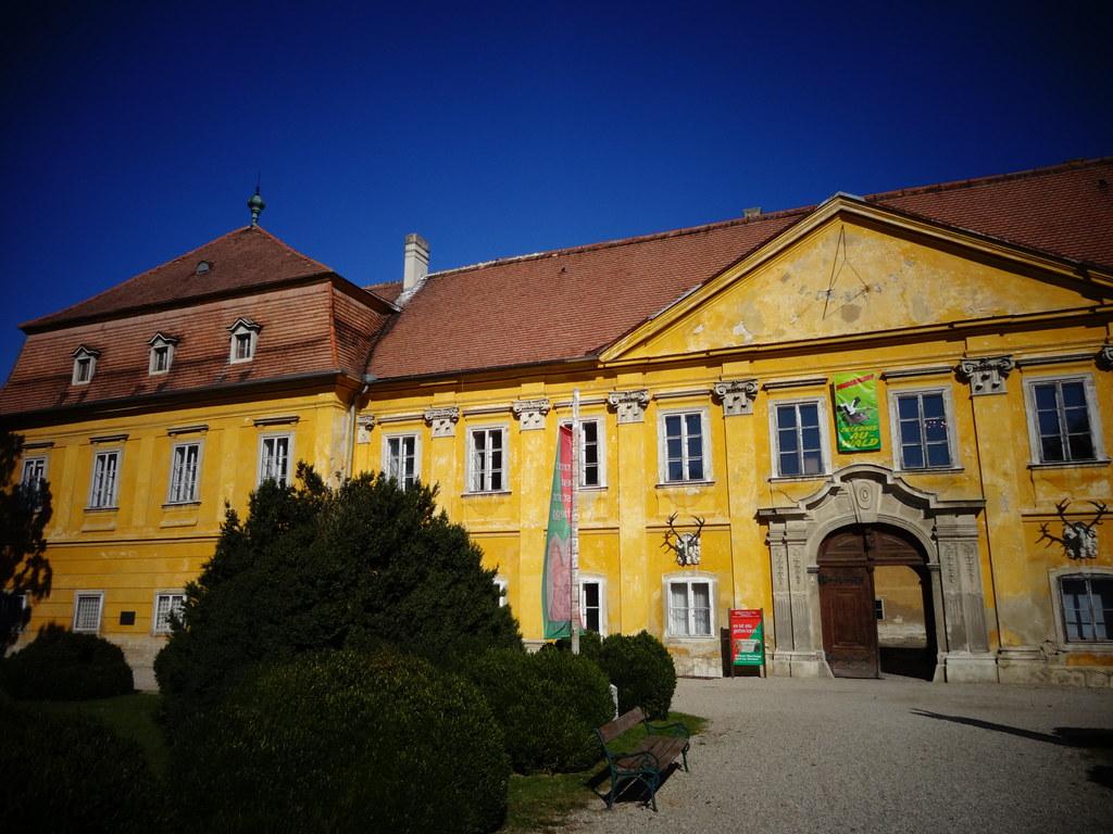 RiS-Kommunal - Centre - Marchegg
