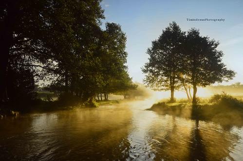 mist sunrise landscape hertfordshire nikond3200 tewin rivermimram tewinwatermeadows nikon1024mm hertfordshirelandscape timandrewsphotography