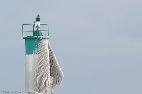 Snowy Owl on a Lighthouse - Explored - Feb 12, 2014 | by Sandra_Gilchrist