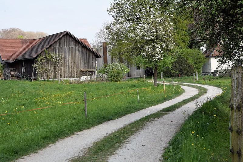 Feldbrunnen 11.04 (5)