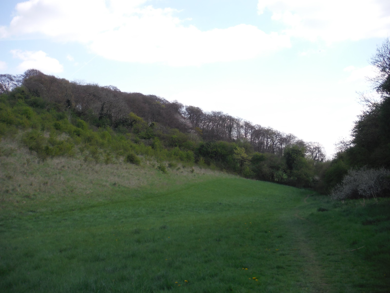 Flowers Bottom SWC Walk 10 - Little Kimble to Saunderton