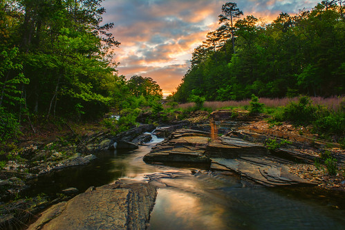 landscape stream hotspringsvillage arkansas unitedstates
