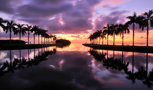 ocean sky seascape reflection nature water clouds sunrise palms landscape day estate florida cloudy miami scenic deering deeringestate deeringestates cutlerbay