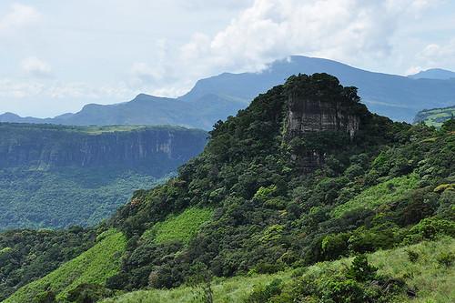 travel landscape tropics nature cloudforest jungle trees flora ceylon knucklesmountainrange srilanka southasia asia abigfave ☯laquintaessenza☯ dnysmphotography dnysmsmugmugcom