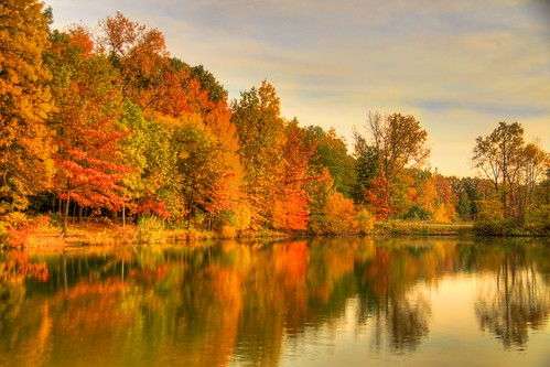 autumn fallcolors mentor lakecounty a77 lakemetroparks jeff® copyright©byjeffreytaipale j3ffr3y