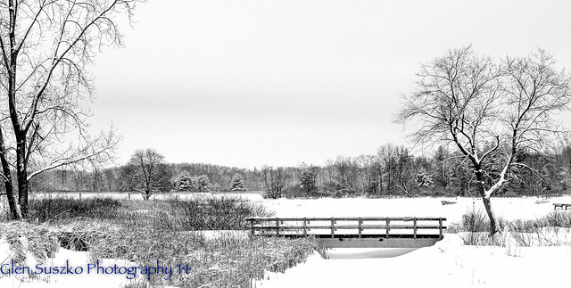 Stony Creek Metro Park - 'snowy' Bridge - Explored 2/3/14 #174
