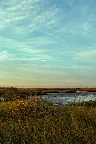 coastal estuary firstlight grass lowtide marsh marshland oquinnestuary saltmarsh seagrass water wetlands hitchcock texas unitedstates us