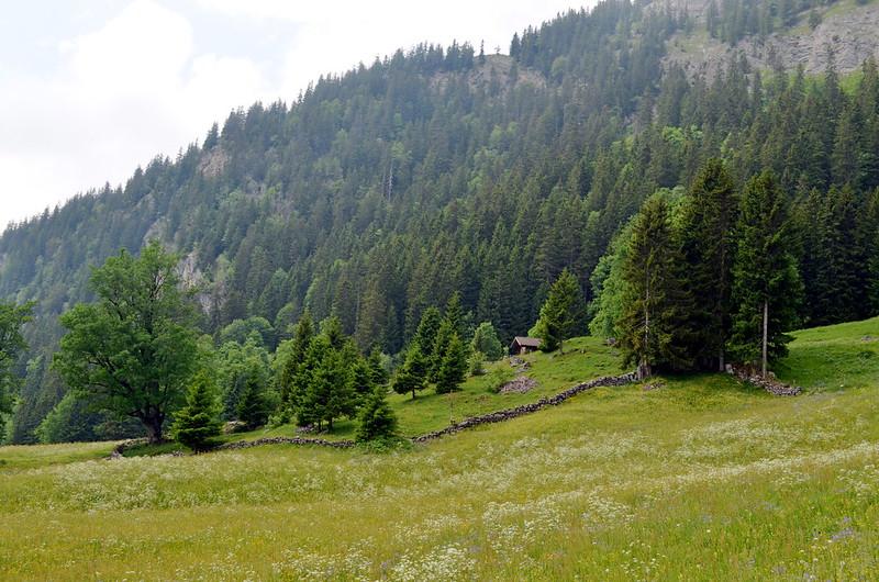 Hasliberg BE - Alpenlandschaft