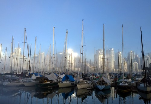 Masts and fog | by Ruth and Dave