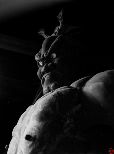 Naraen Kongō protecting us from evil, Taiyoji Temple | by Hans ter Horst Photography