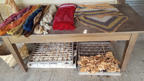 Ewe to Yarn Challenge at the Homeplace 1850s Working Farm | by LandBetweentheLakesKYTN
