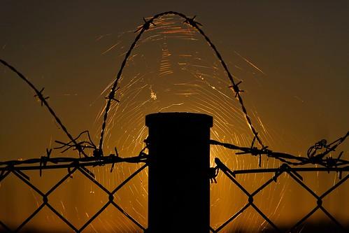 sun metal sunrise fence finland helsinki august barbwire 2013 canoneos7d adobelightroom4