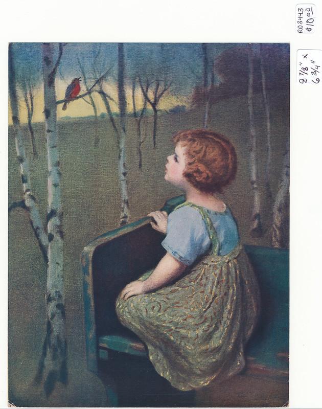 SD3443 Samuel Schiff Co. N.Y. - Young girl admiring a Robin