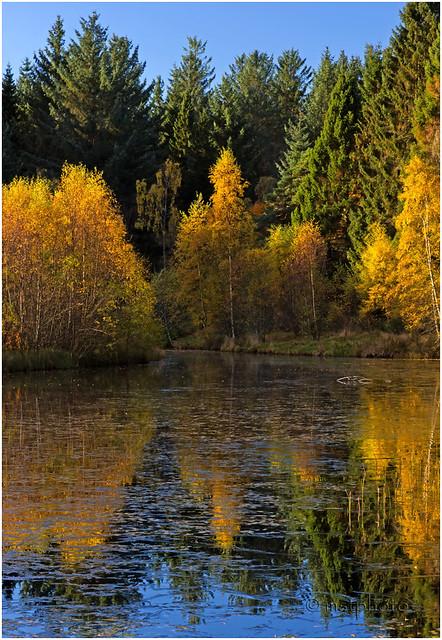 Autumn, Castle Fraser 4