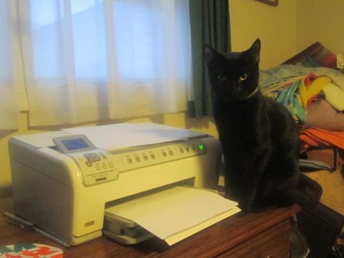 Guardian of the Printer | by Random Retail