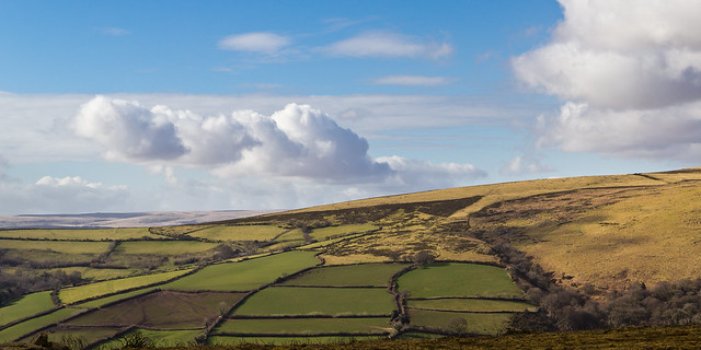 Muted winter palette in patchwork fields on the moorland fringe