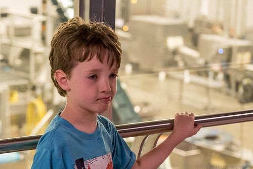 Liam and the Cheese Factory | by Stephen Downes
