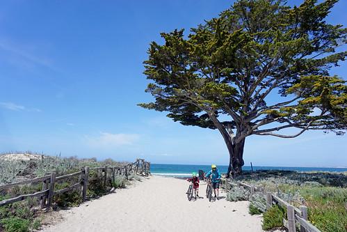 Monterey Bay Coastal Bike Path   by benjaminfish