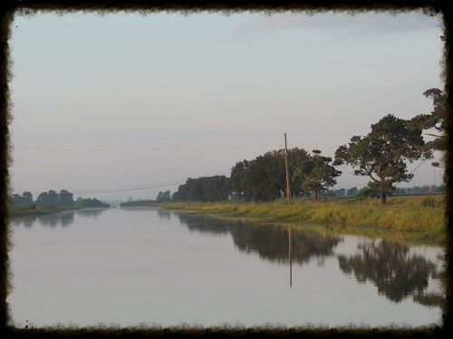 usa sunrise texas earlymorning ricefields morningmist riceirrigationcanal westburychina