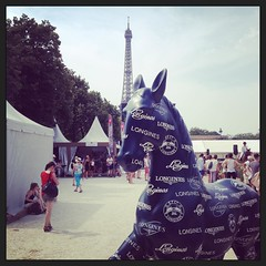 Paris Eiffel Jumping #pariseiffeljumping #jumping #paris #champdemars #longines