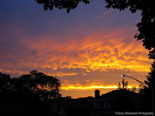 Sunset in Elmwood Park | by Tommy DiGiovanni