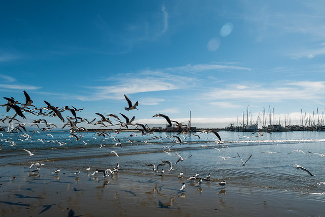 Santa Barbara California.