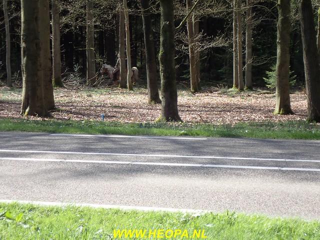 2017-04-11           Leersum  24 km     (50)