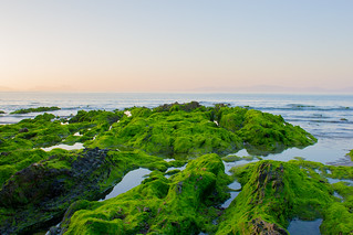 Praia de Patos | by jorge.cancela