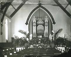 Congregational Church Light Square Harvest festival 1895 Rev Walter Jones Minister E.H.Davies organist Organ sent to Sandy Creek