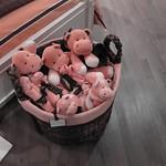 Pink animals