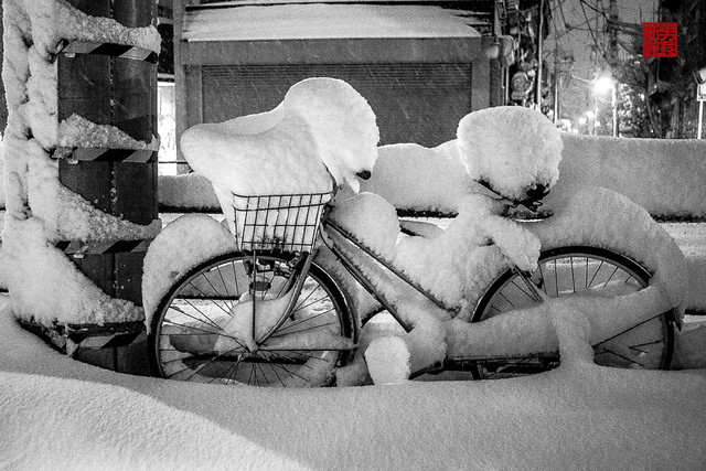 snow in tokyo・雪の東京