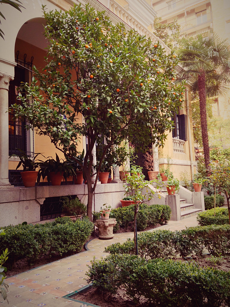 Museo Sorolla Madrid.Garden Orange Trees Museo Sorolla In Madrid Is Dedicated Flickr