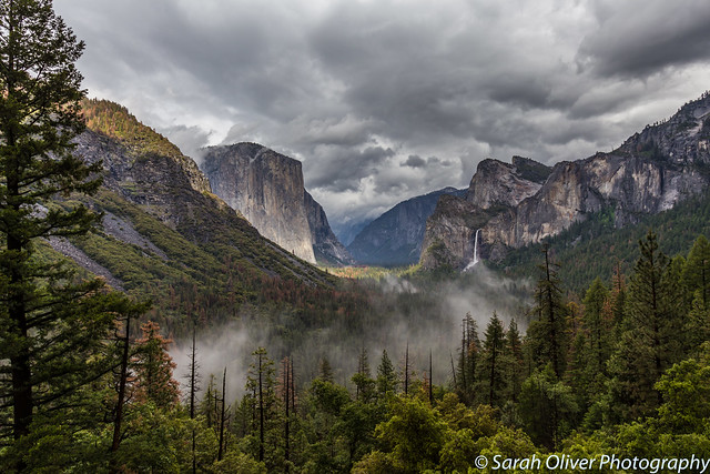 A lovely low mist hanging over Yosemite Valley