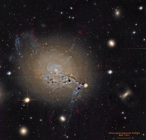 NGC 1271 | by domingopestana