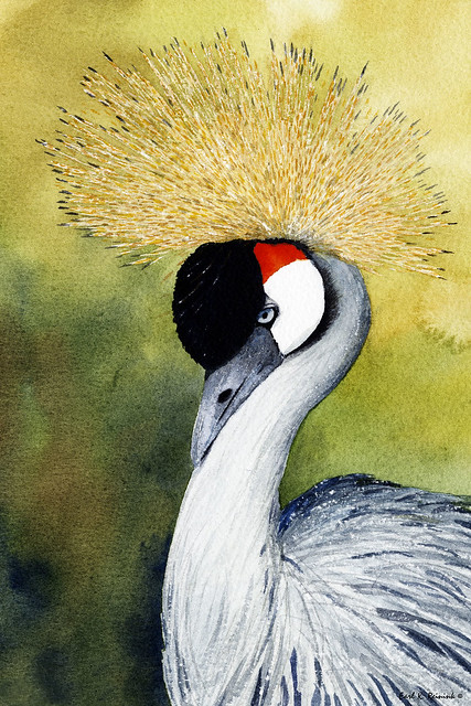 African Hooded crane (watercolor painting)