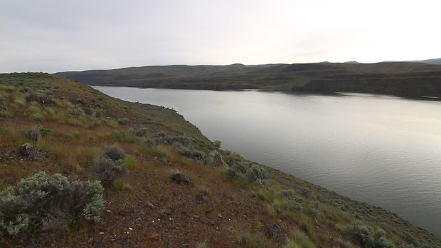 Panoramic view by Columbia River