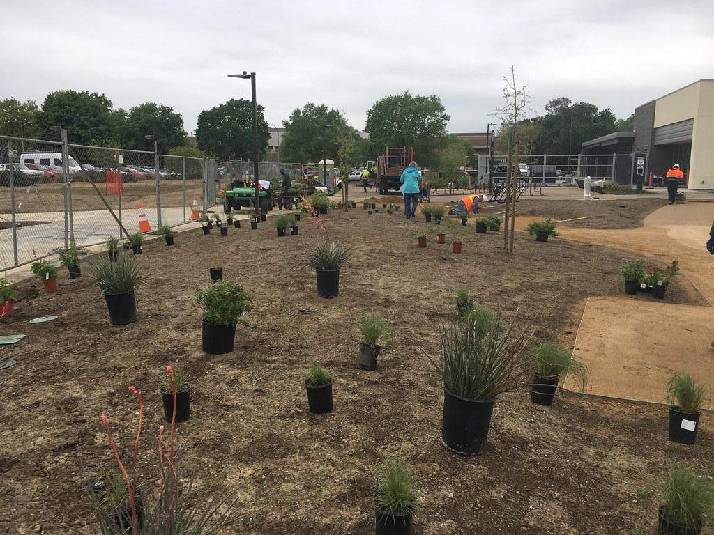 Hummingbird GATEway Garden Planting Event