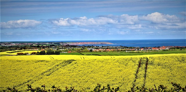 View of North Sea from Hunmanby 2