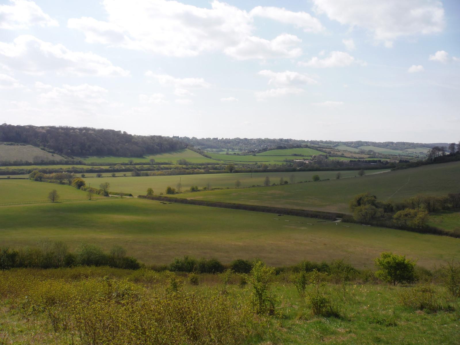 Saunderton, from Bradenham Beeches SWC Walk 10 - Little Kimble to Saunderton
