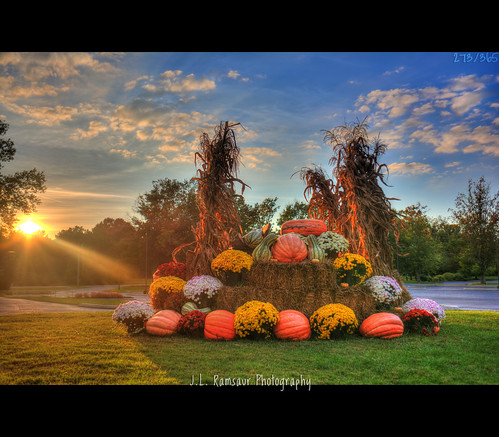 blue sunset sky orange sun sunlight fall nature gourds sunshine yellow clouds sunrise landscape outdoors photography photo nikon tennessee fallcolors pumpkins bluesky pic mums photograph cornstalks daytime thesouth 365 sunrays hdr haybales cumberlandplateau sunflare whiteclouds beautifulsky sunglow photomatix putnamcounty deepbluesky cookevilletn bracketed skyabove project365 middletennessee 2013 hdrphotomatix hdrimaging 365daysproject 365project 365photos ibeauty southernlandscape 273365 hdraddicted allskyandclouds d5200 southernphotography screamofthephotographer hdrvillage jlrphotography photographyforgod worldhdr nikond5200 hdrrighthererightnow engineerswithcameras hdrworlds god'sartwork nature'spaintbrush jlramsaurphotography 1yearofphotographs 365photographsinayear 1shotperdayfor1year