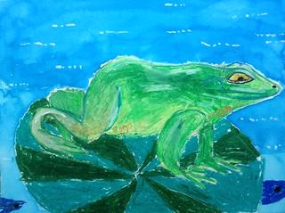 A Huge Green Frog